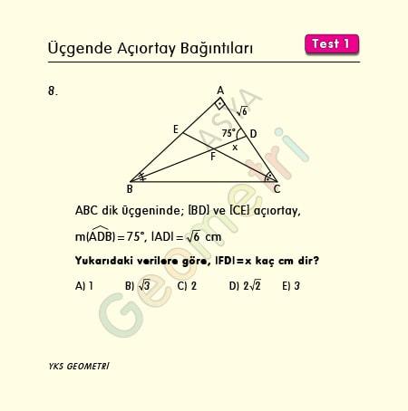 üçgende açıortay soruları