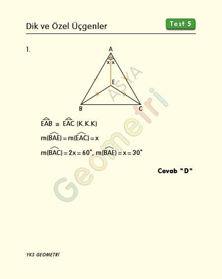 dik ve özel üçgenler test 5 çözümleri